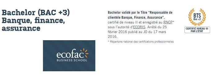licence BFA Rennes